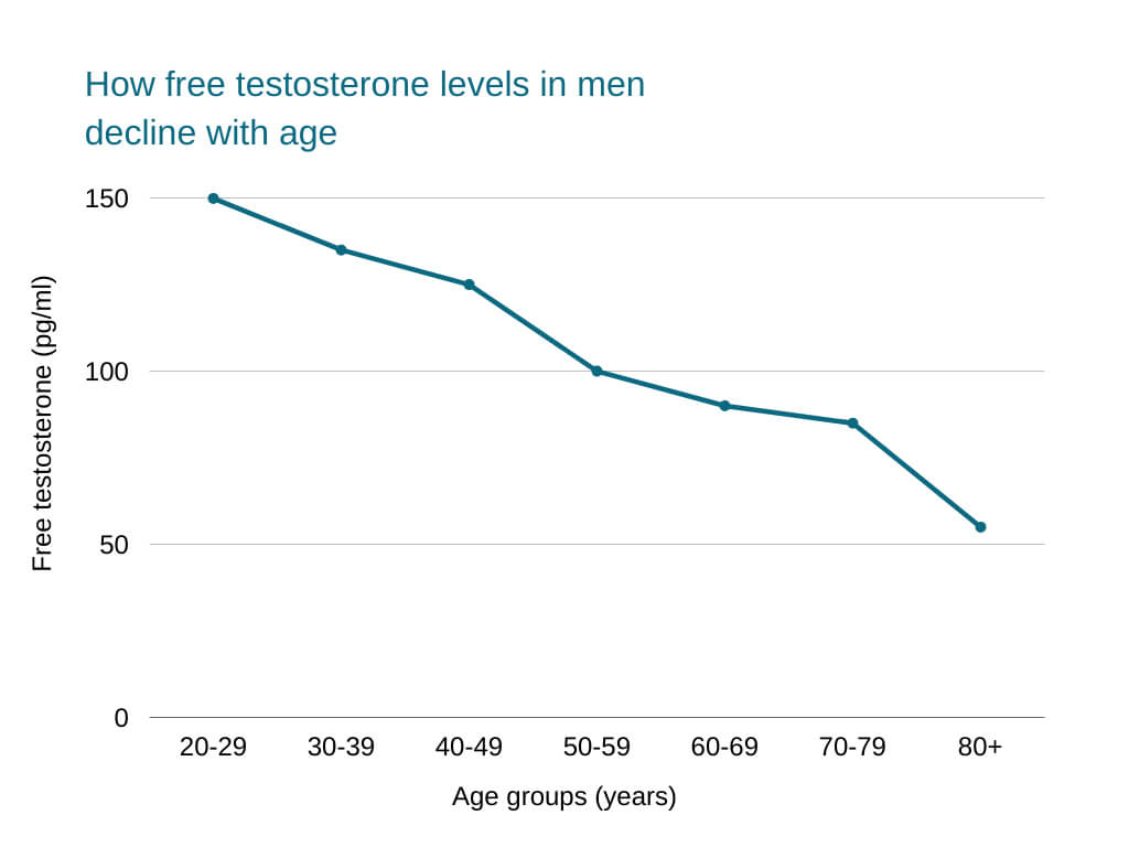 free testosterone How free testosterone levels in men decline with age