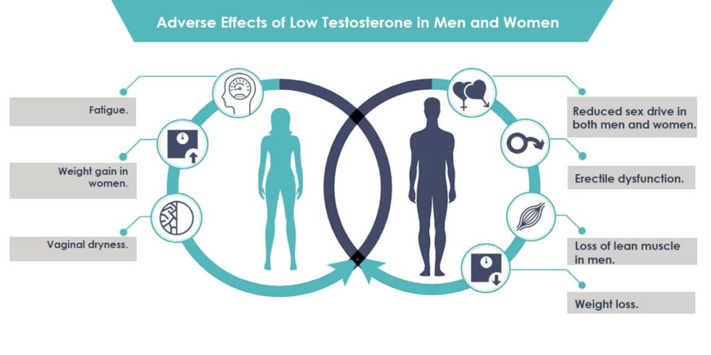 Adverse-Effects-of-Low-Testosterone-in-Men-and-Women