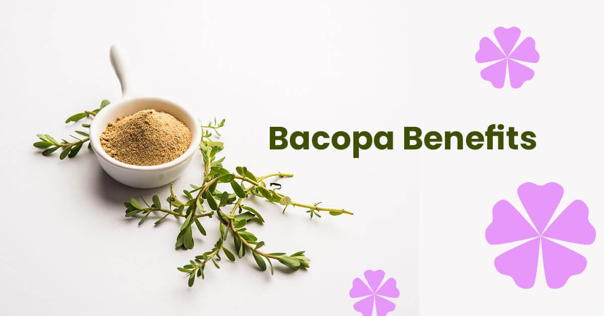 Bacopa Benefits