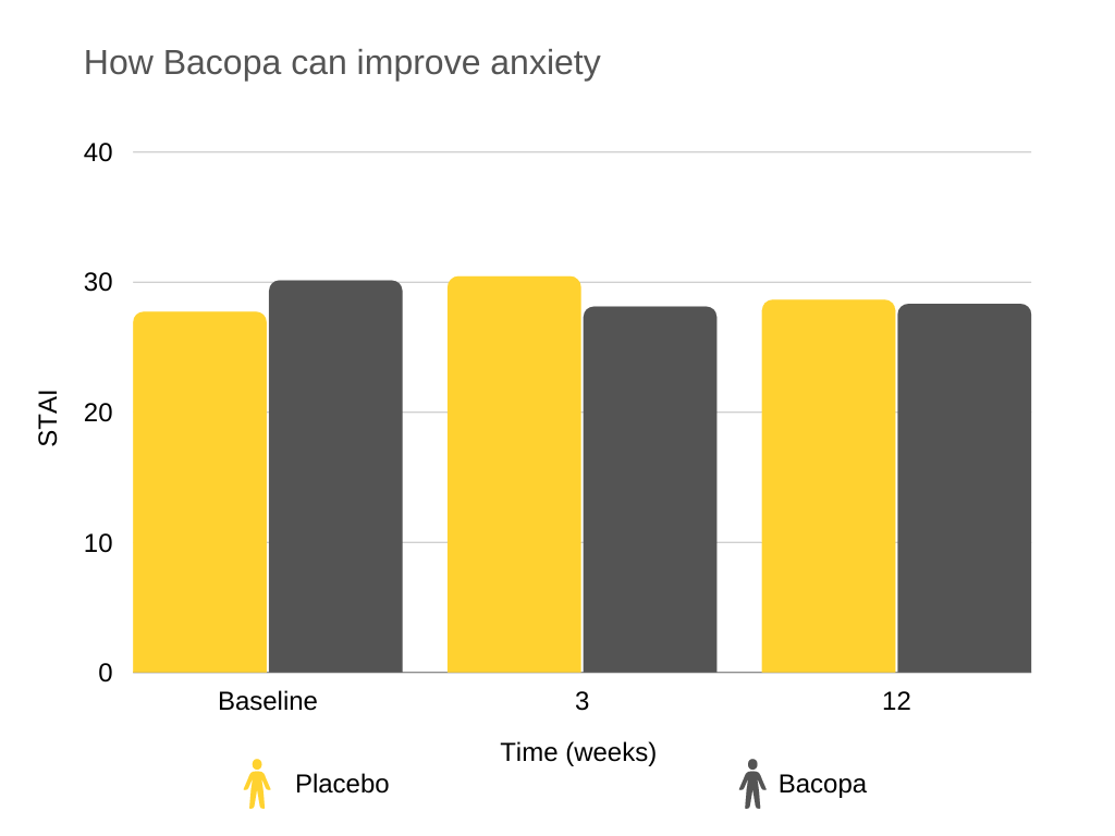 bacopa benefits How Bacopa can improve anxiety
